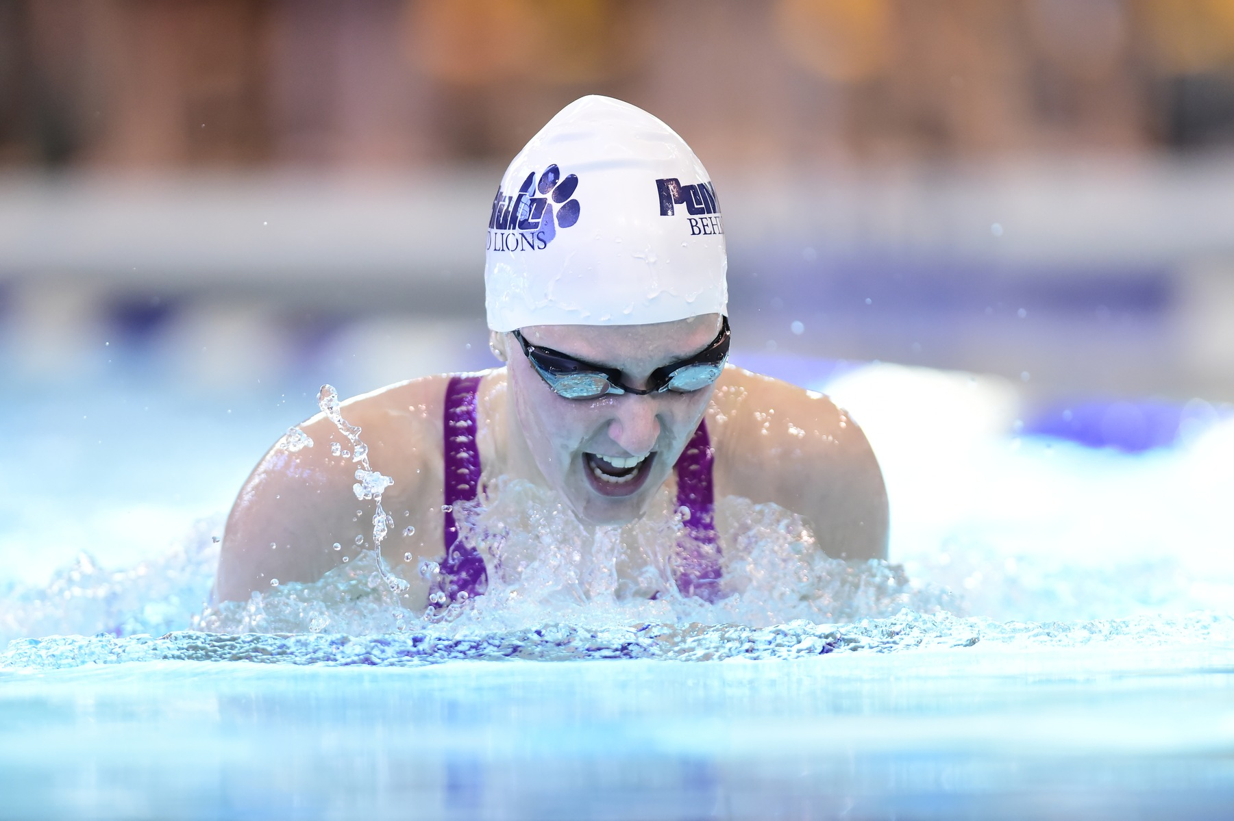 Women's Swimming Wins Tri-Meet; Defeats Pitt-Bradford, Wells