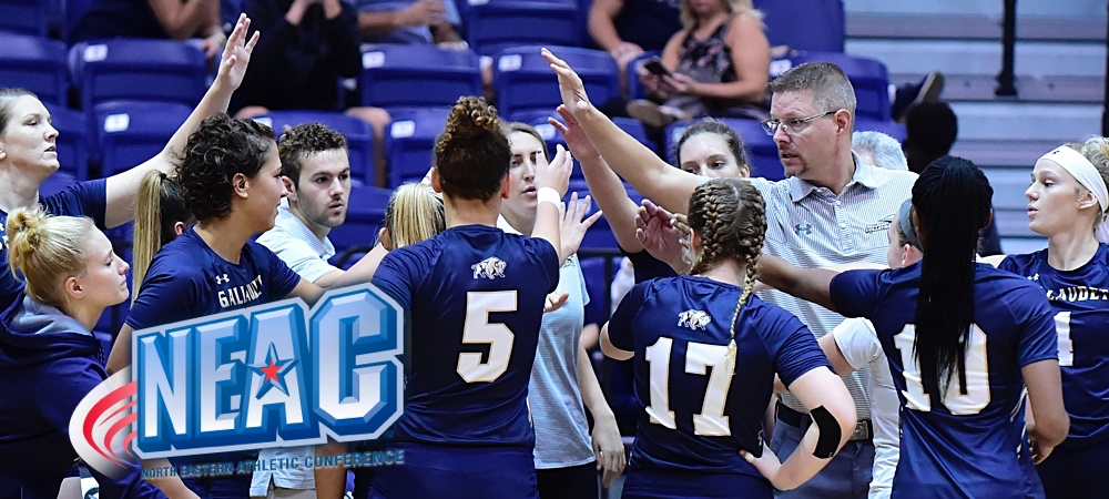Gallaudet women's volleyball team huddle during a timeout.