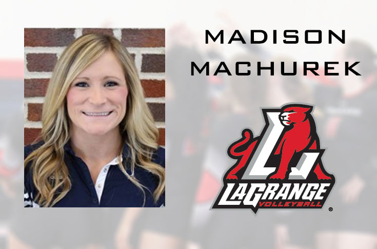 Volleyball: Madison Machurek named as Panthers' new head coach