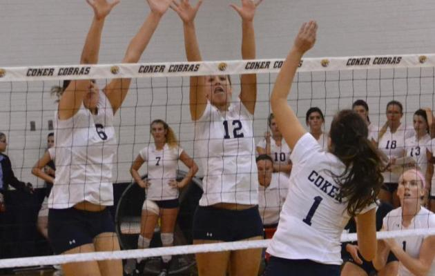 Cobras Fall to Crusaders 3-1