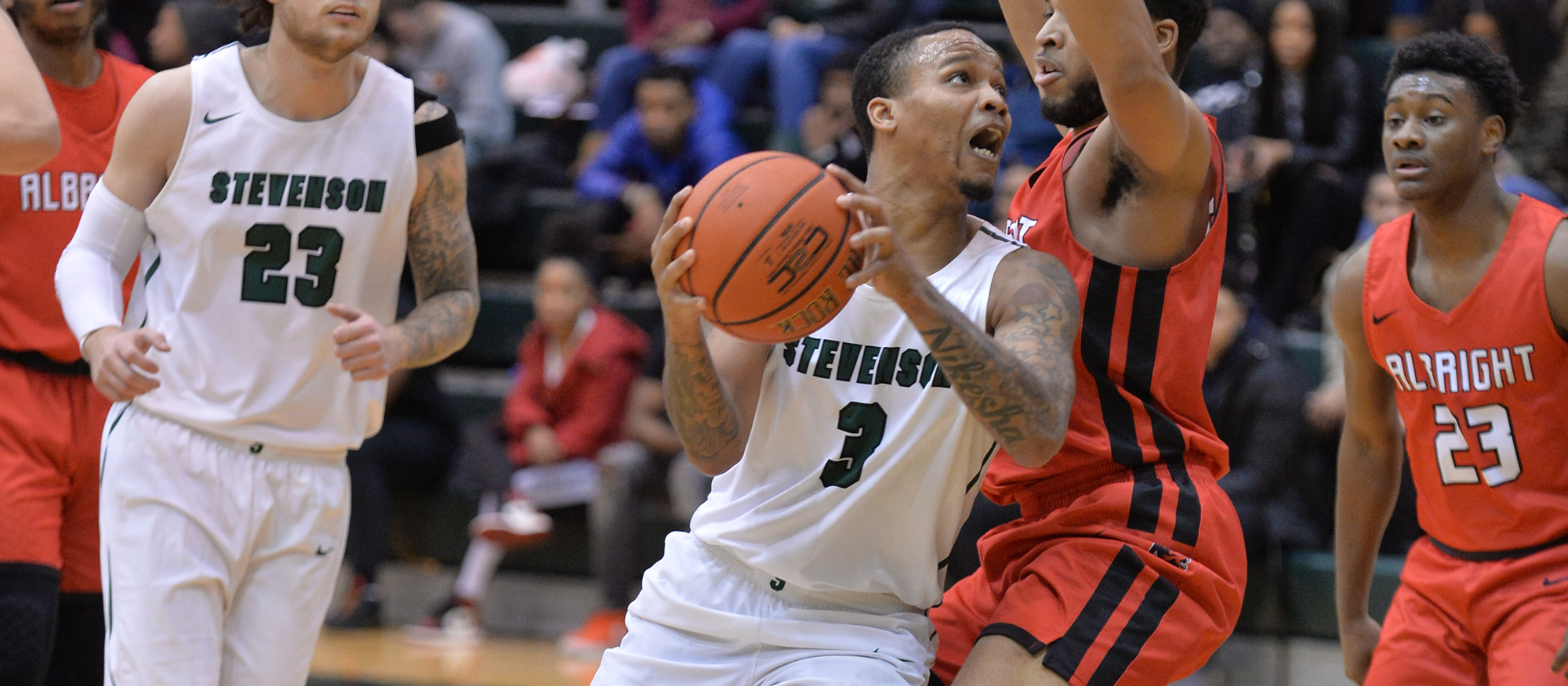 Men's Basketball Hosts Albright in MAC Commonwealth Championship Monday