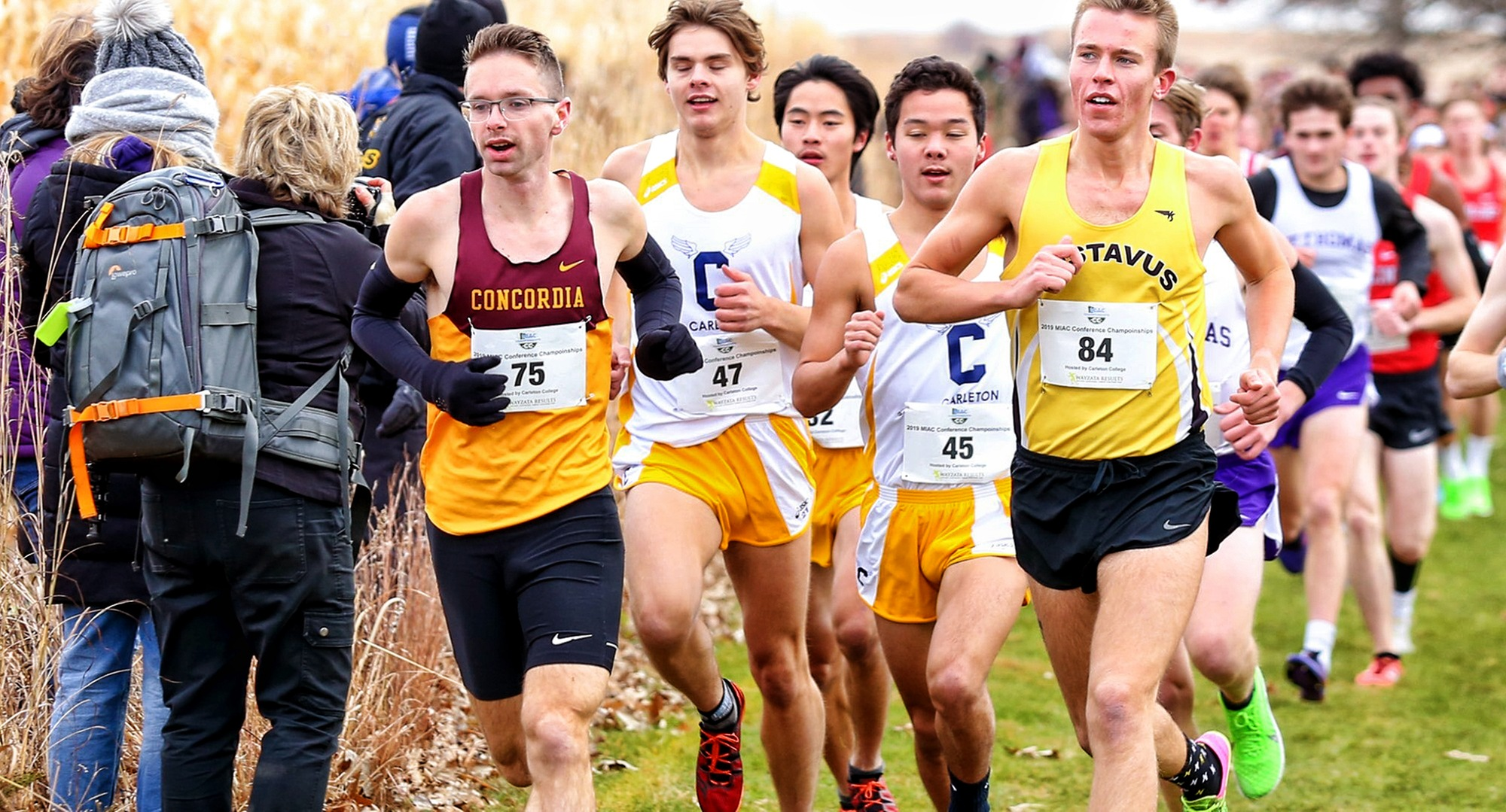 Senior Eric Wicklund led the Cobbers in the NCAA Regional Meet at Wartburg College as CC posted its first Top 15 finish since 2003. (Photo courtesy Nathan Lodermeier)