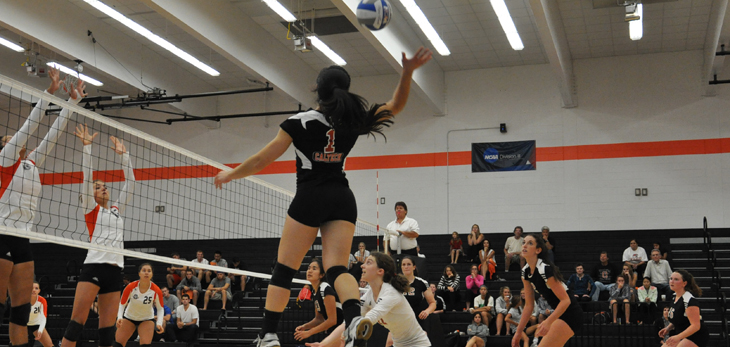 Beavers End Season with 3-0 Loss to CLU