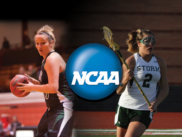 Liz Stephens Selected to Attend NCAA Career in Sports Forum