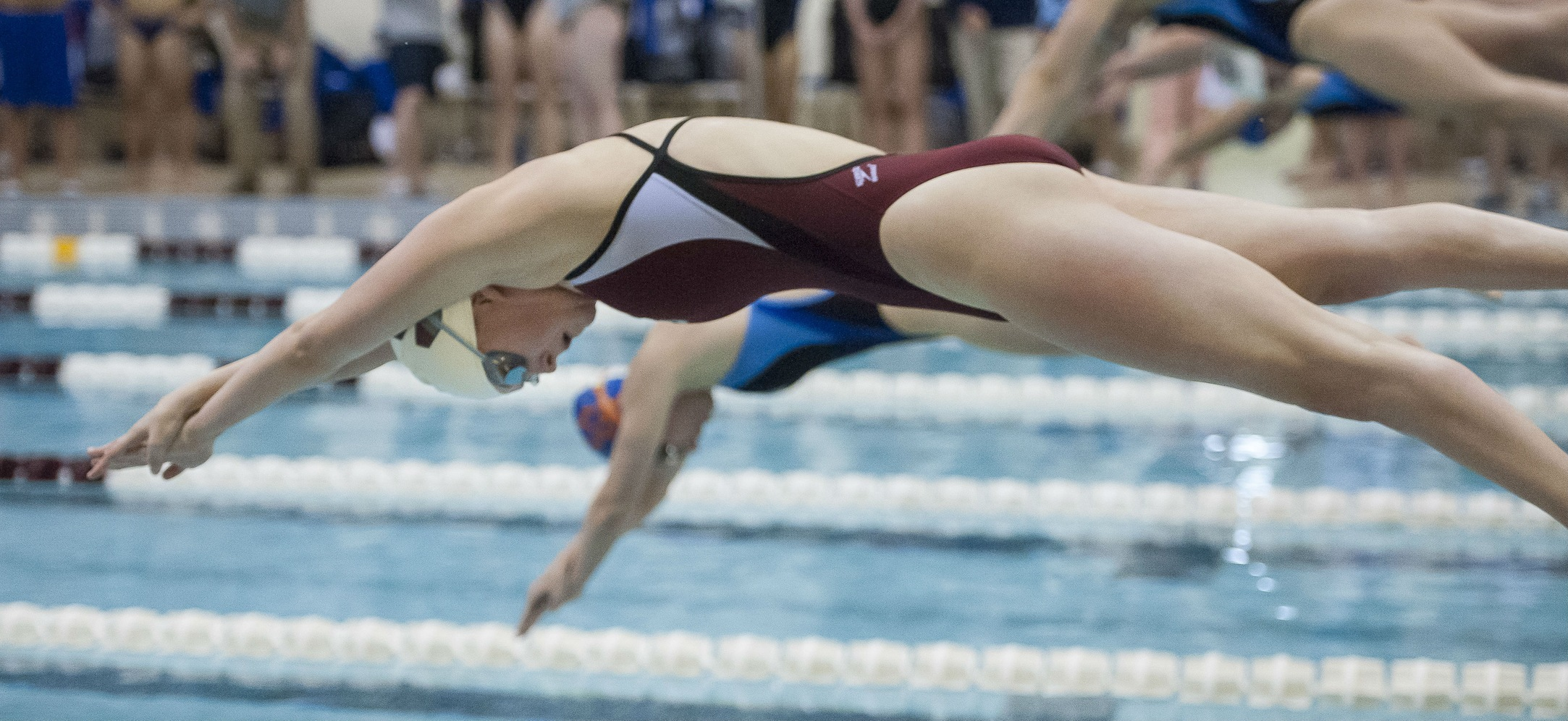 Women's Swimming and Diving Swims Past Union, 195-101