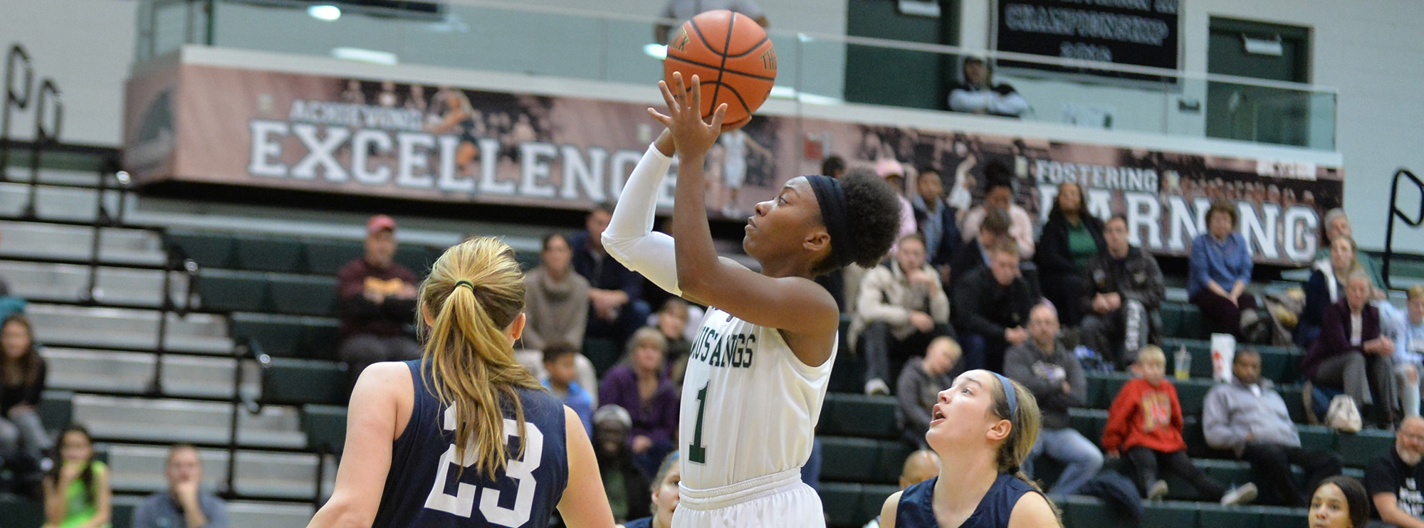 Women's Basketball Returns to Conference Play, Hosts Alvernia Saturday