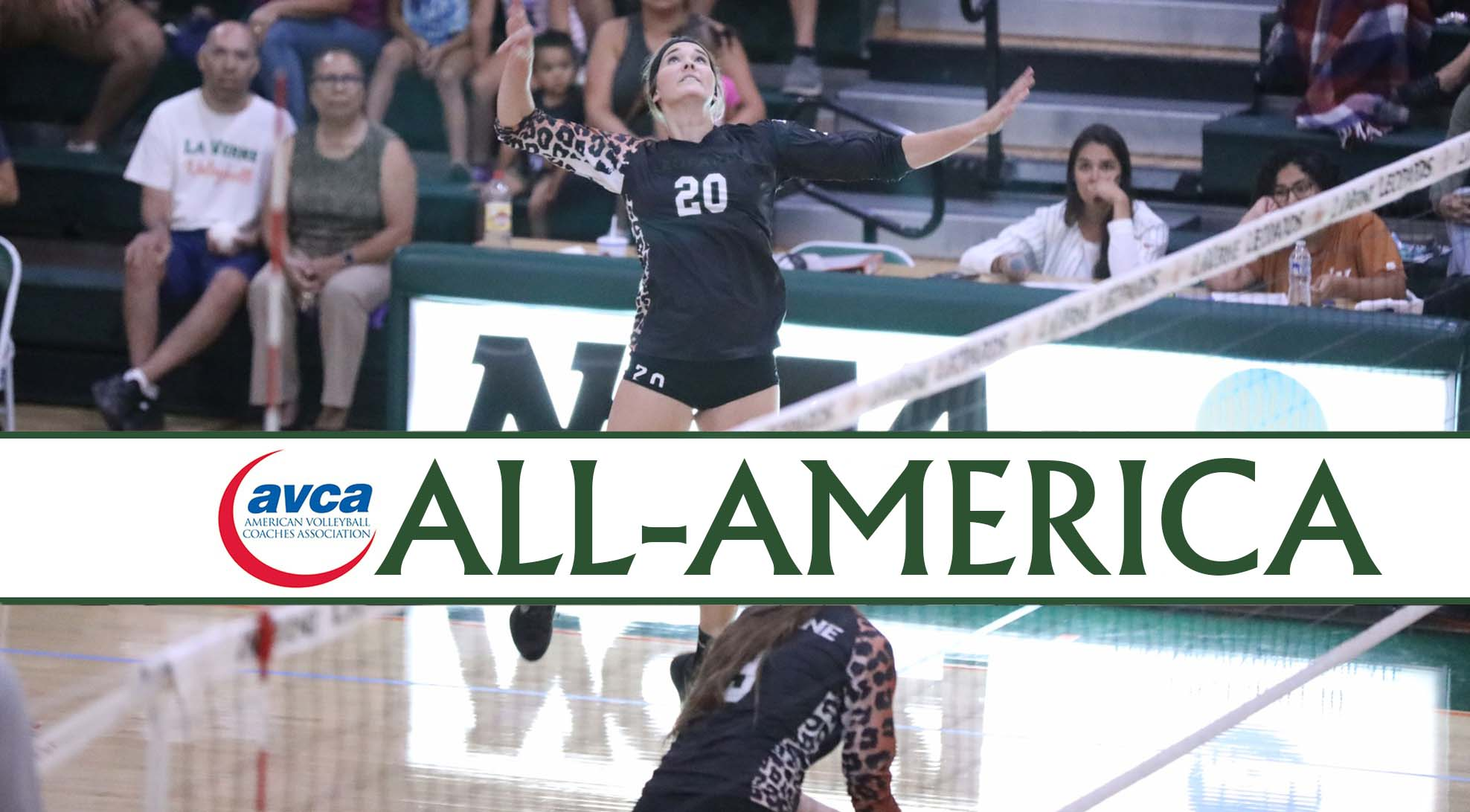 Sievers named All-America Honorable Mention