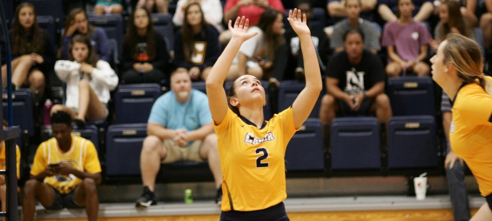 Cobras Fall to Anderson 3-1 in South Atlantic Conference Battle