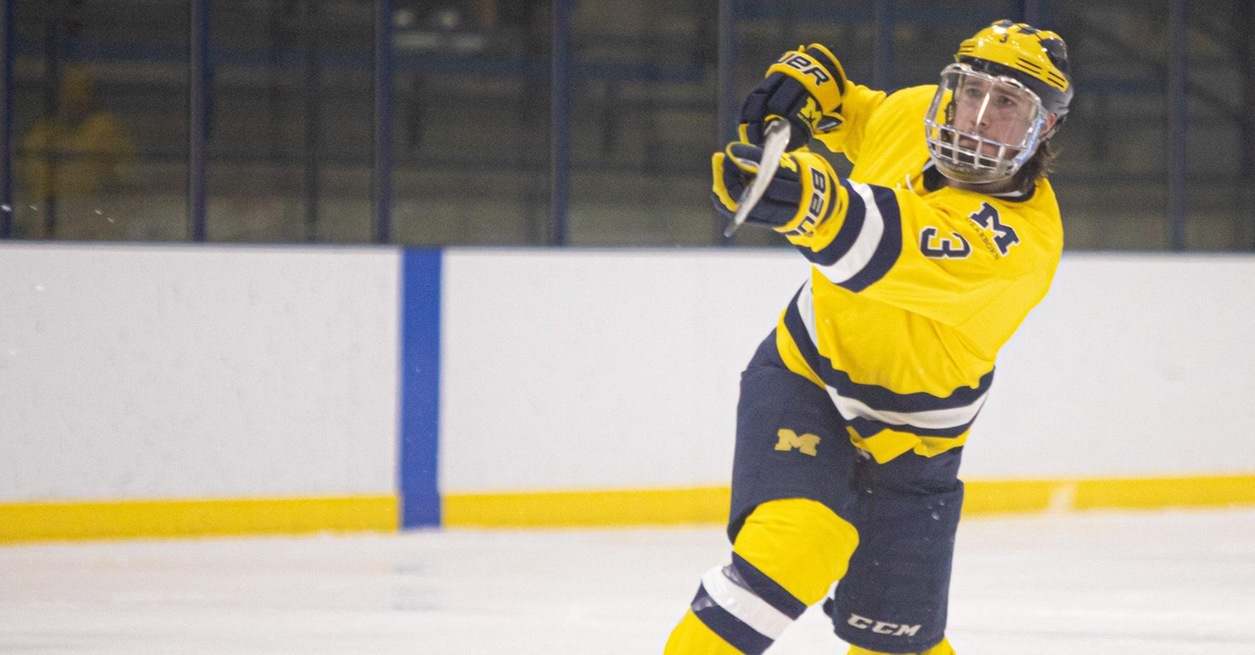 Wolverines hold on for 4-3 over No. 9 Panthers