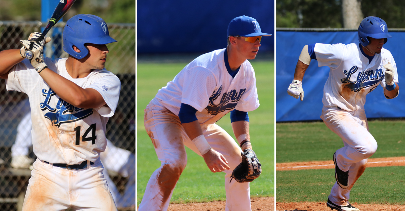 Baseball Adds Three to Division II All-CCA South Region Team