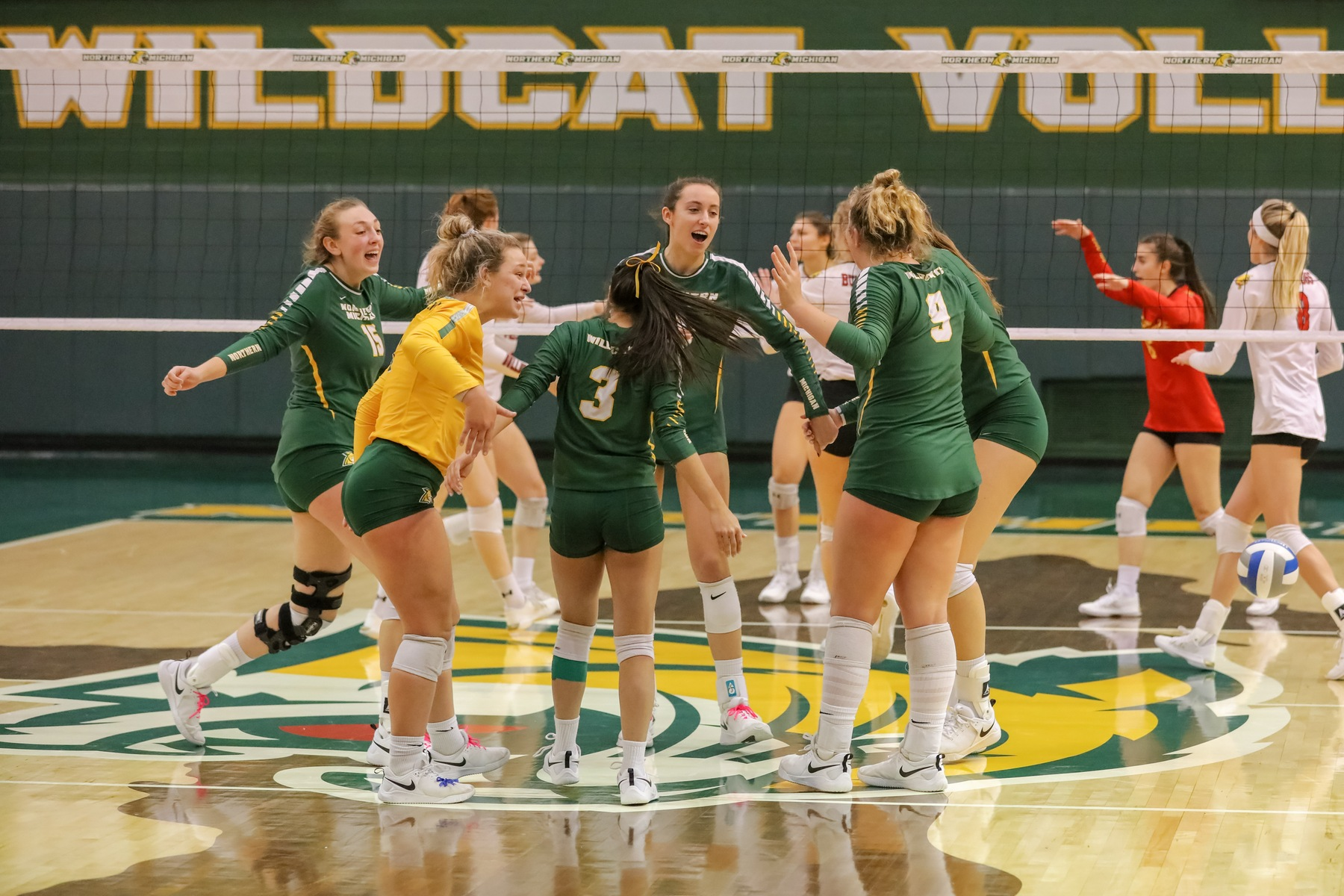 Volleyball Honors Seniors but Fall to #20 Ferris State