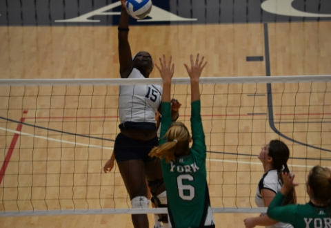 UMW Volleyball Tops York, 3-1, in CAC Action