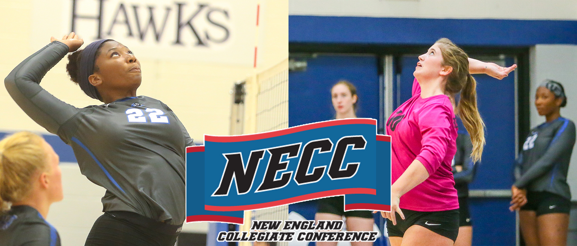 NECC All-Conference Women's Volleyball