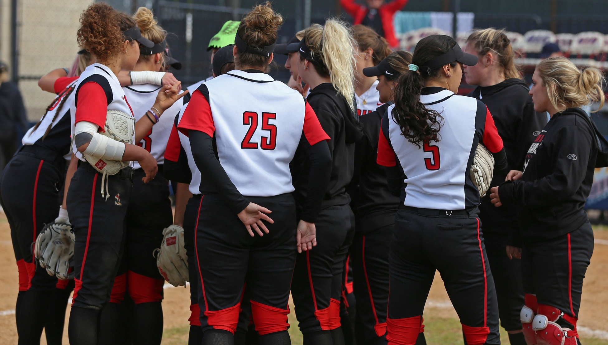 Fourth Straight 25-Win Season, Consecutive-Win Streak Highlight 2019 Softball Campaign