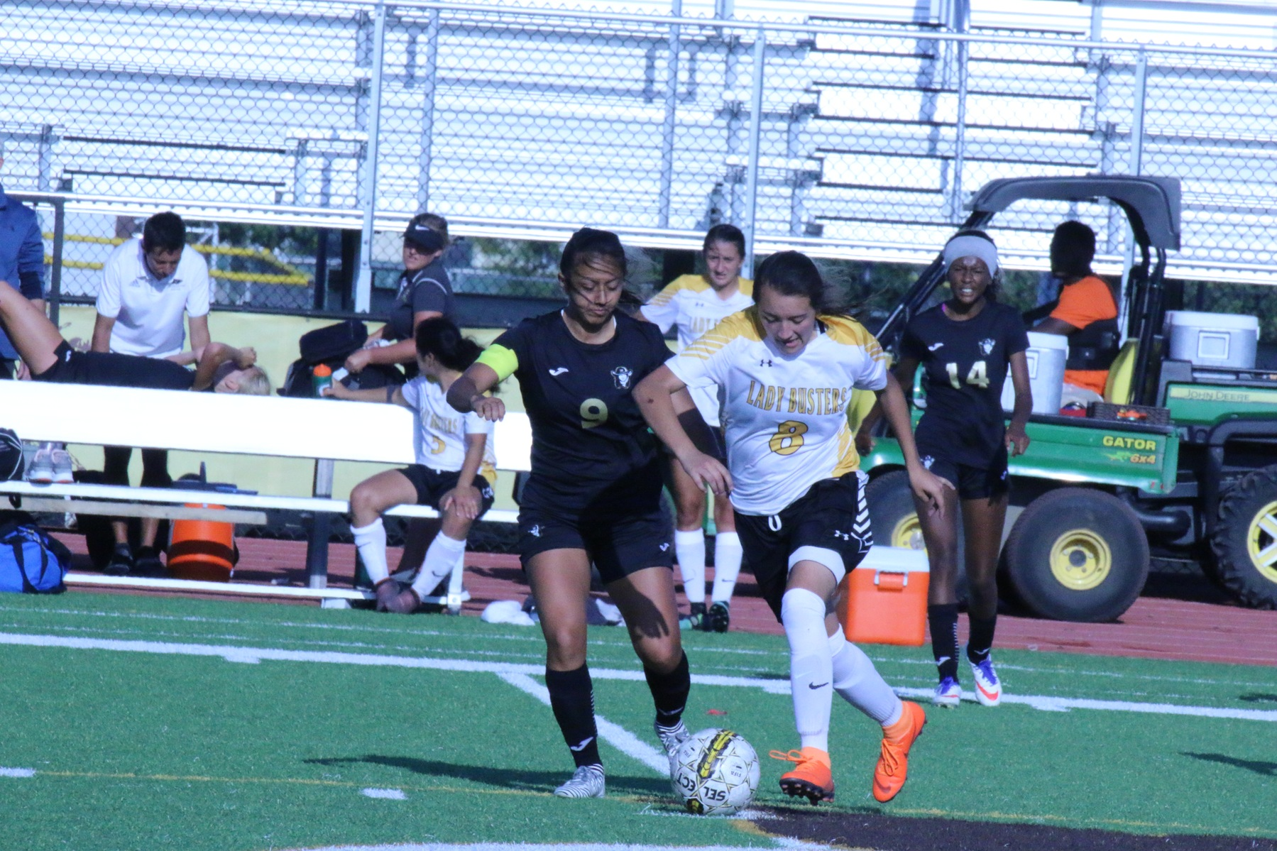Broncbusters fall to Northeastern at home
