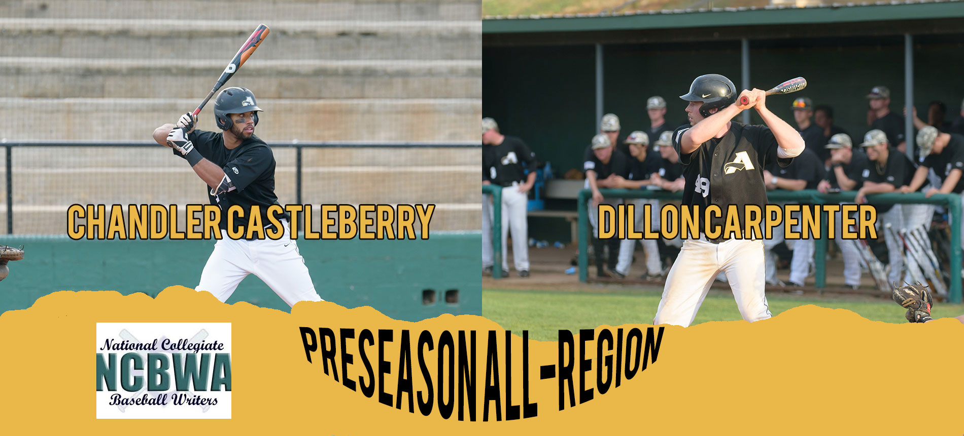 Carpenter and Castleberry Named to NCBWA Preseason All-Region Team