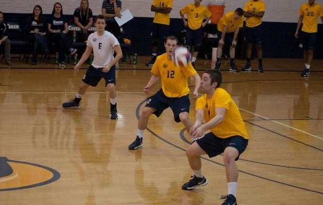 Coker and Limestone to Battle in Men's Volleyball Home Opener Thursday