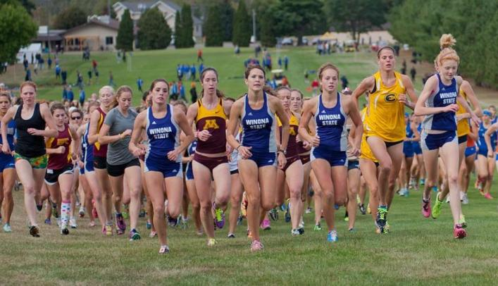 Mauer Leads Women's Cross Country at Blugold Invite