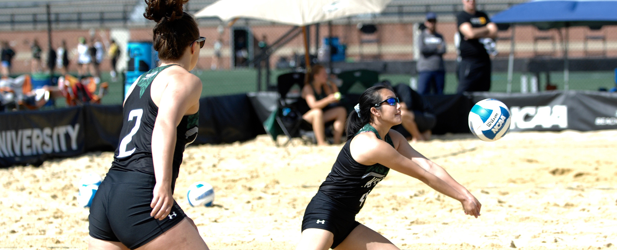 Mustangs Sweep Huntingdon, Top Loyola