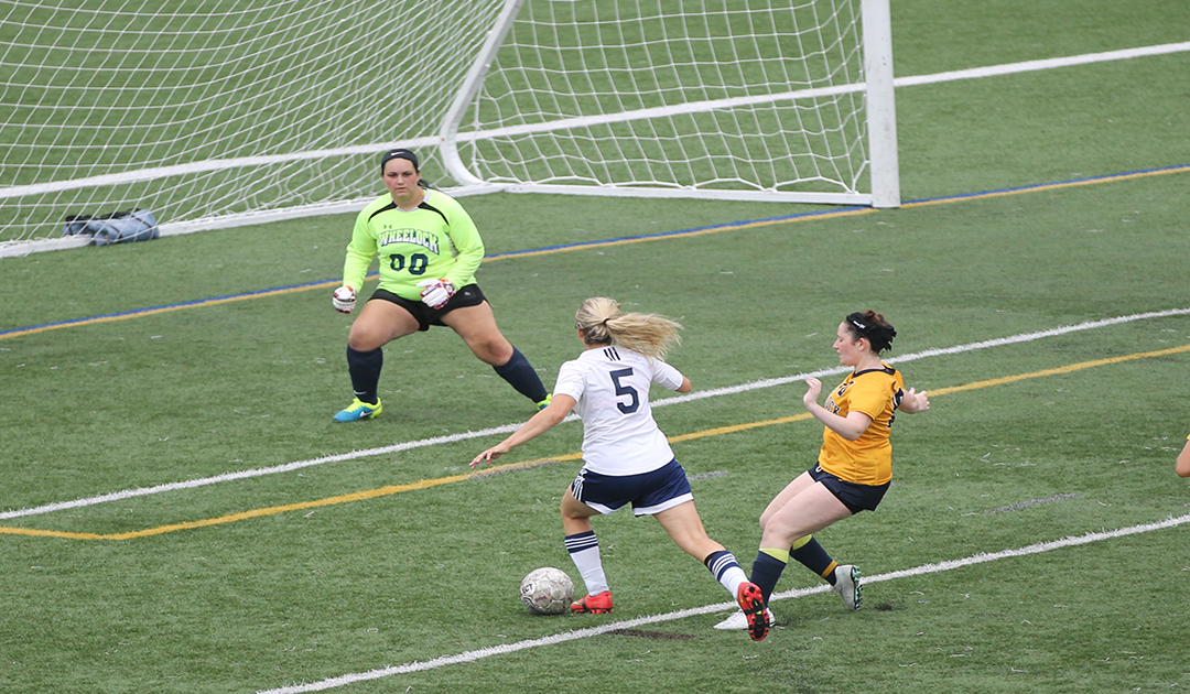 Schojan's Hat Trick Pushes Falcons Past Mustangs