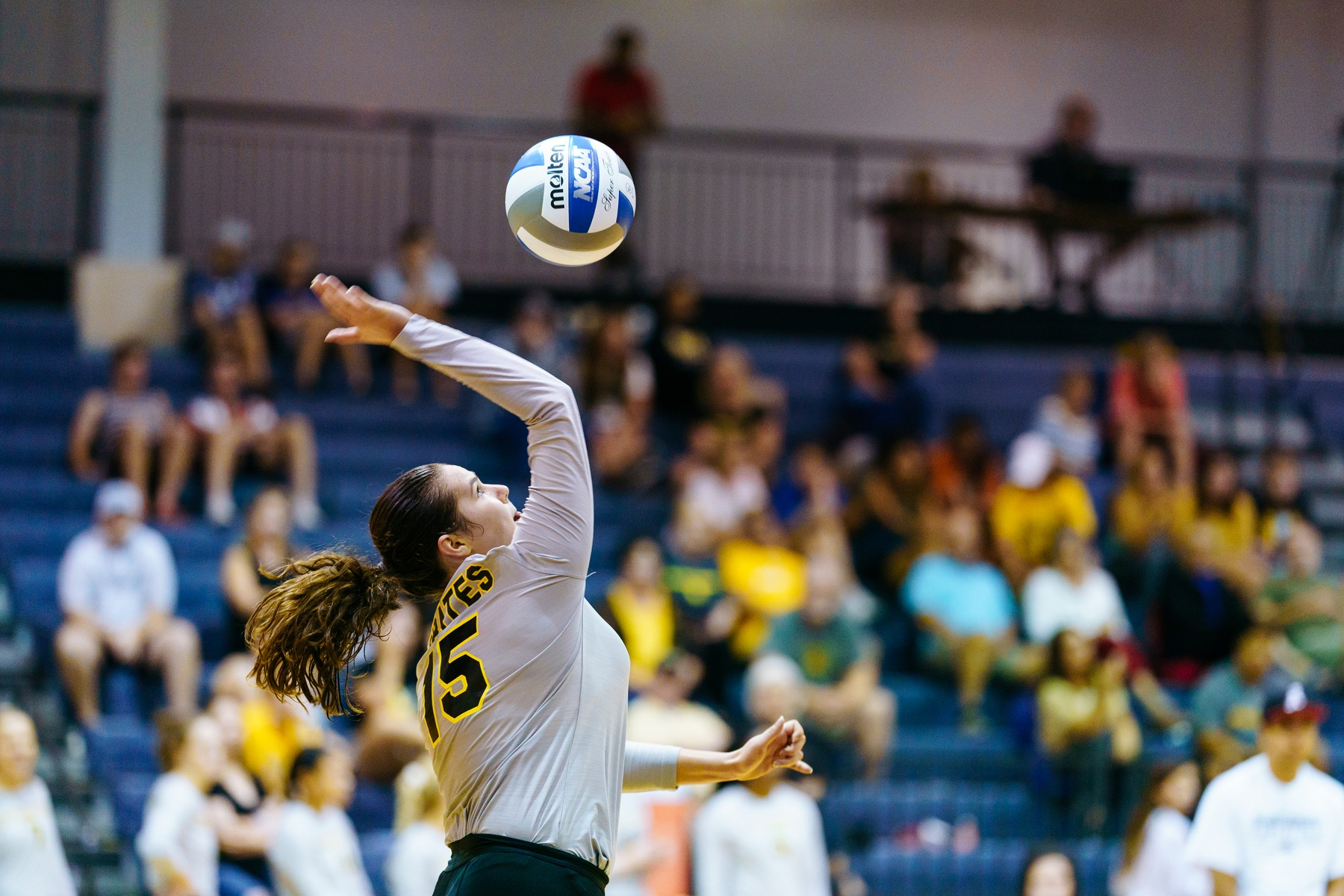 Volleyball Aces Match Against Austin College in Three Sets