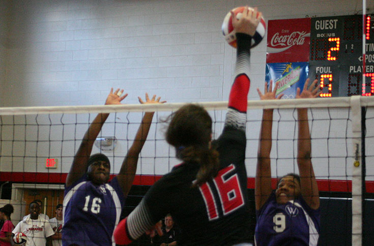 Volleyball: Lauren Sanders records double-double in Panthers' USA South match at Piedmont