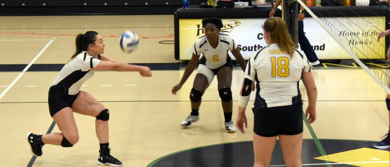 2019 Women's Volleyball Preseason