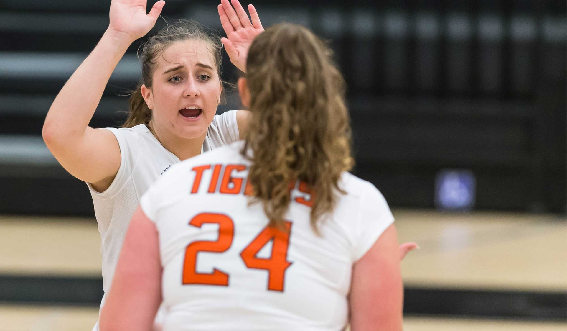 Oxy Volleyball Sweeps Manchester