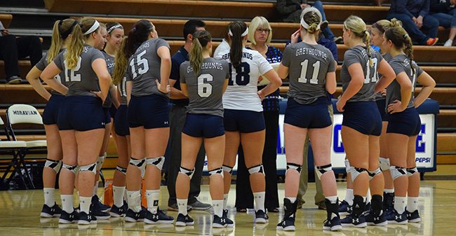 The Greyhounds huddle between sets in a match versus The University of Scranton.