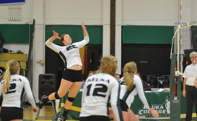 Women's Volleyball Loses on the Road