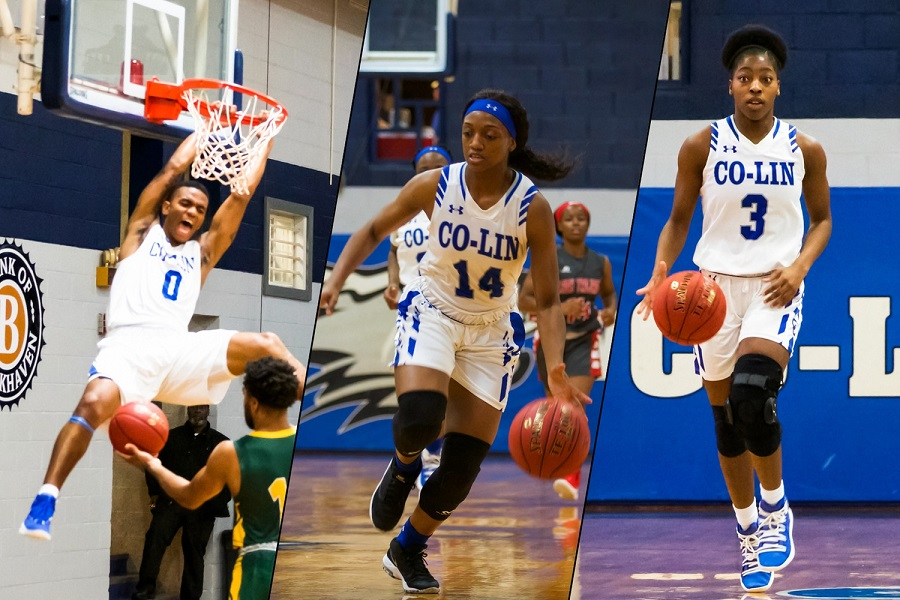 Co-Lin's Woodall, Davis, and Carter tabbed All-State