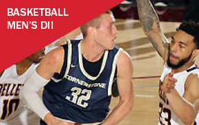 NAIA Men's DII Basketball Championship