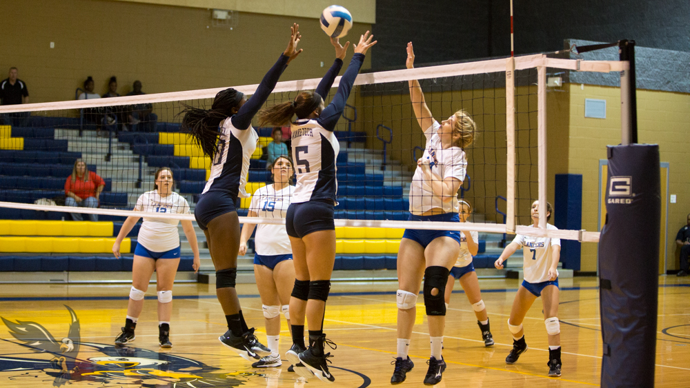 Region X Update: Eagles Fall 3-0 to Walters State