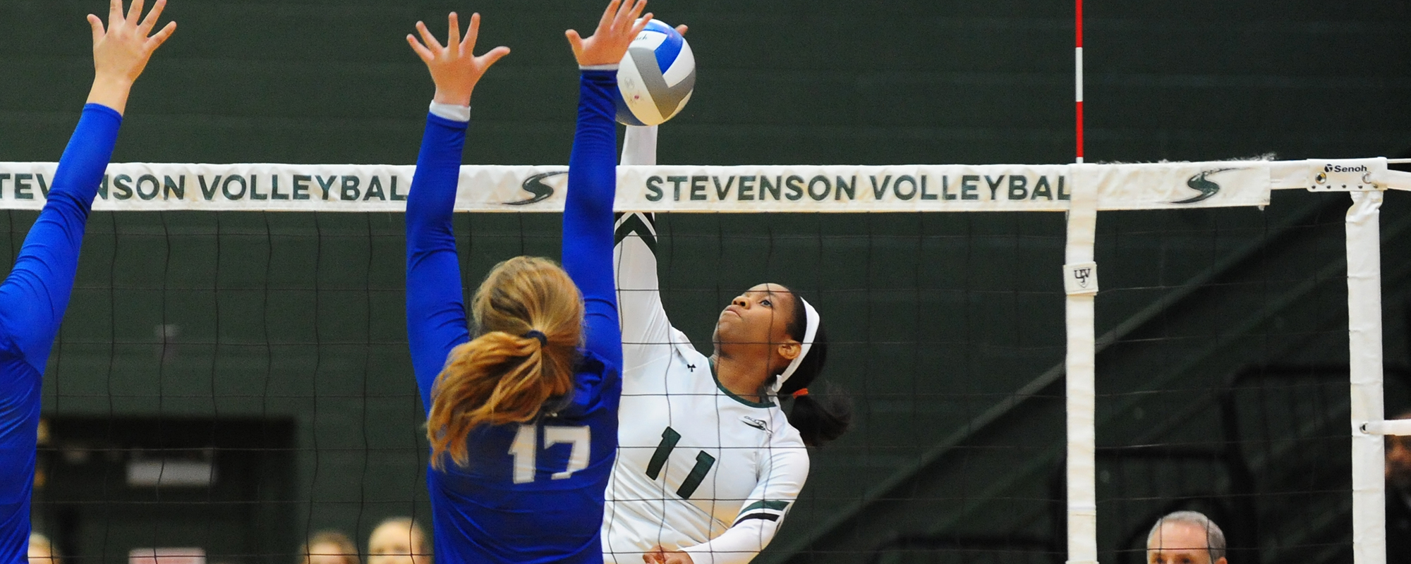 Mustangs Bounce Back, Sweep Lycoming