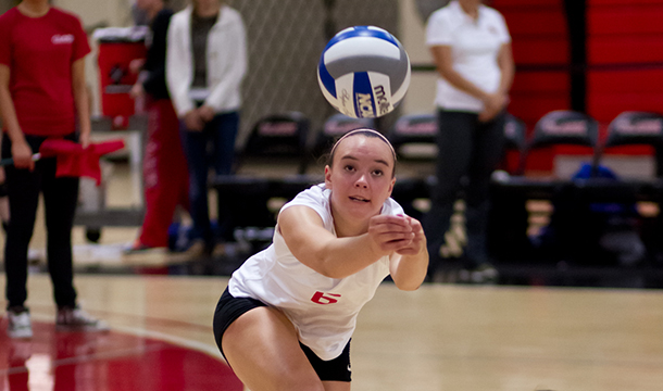 Volleyball Receives AVCA Team Academic Award