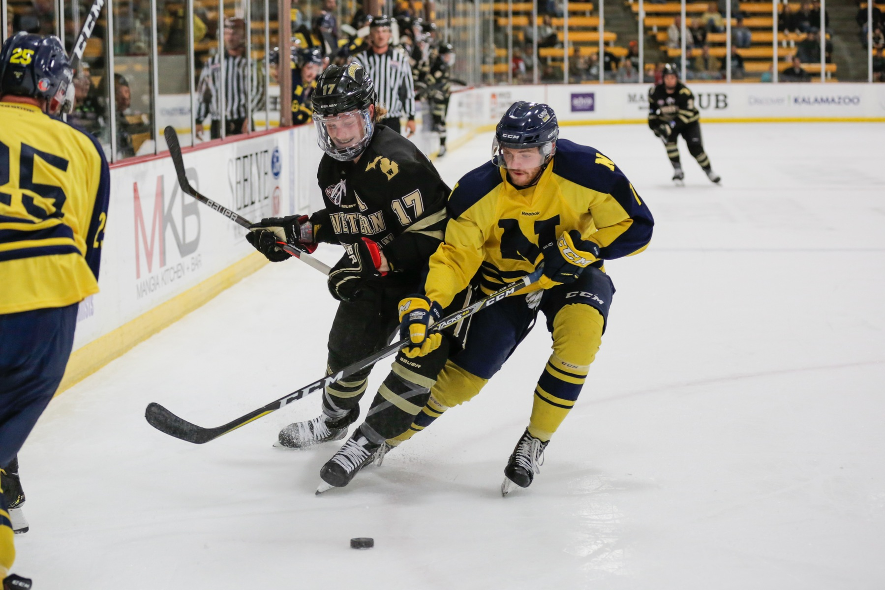 OOKS FALL TO STRONG WESTERN MICHIGAN TEAM 6-1