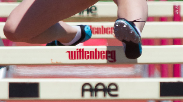 Tigers Excel At Own Wittenberg Invitational