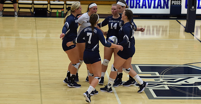 The Greyhounds celebrate a point win in a match versus Wilkes University.