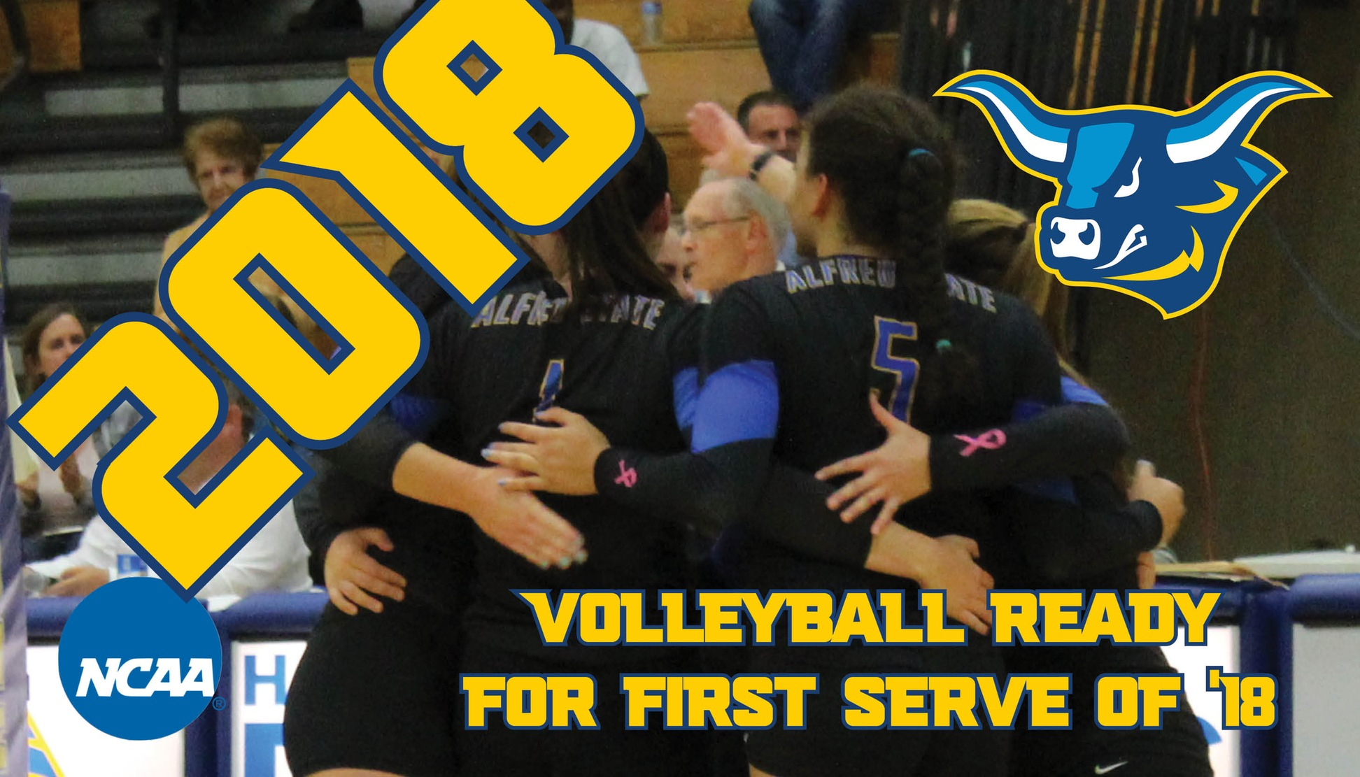 2018 Alfred State Volleyball Preview