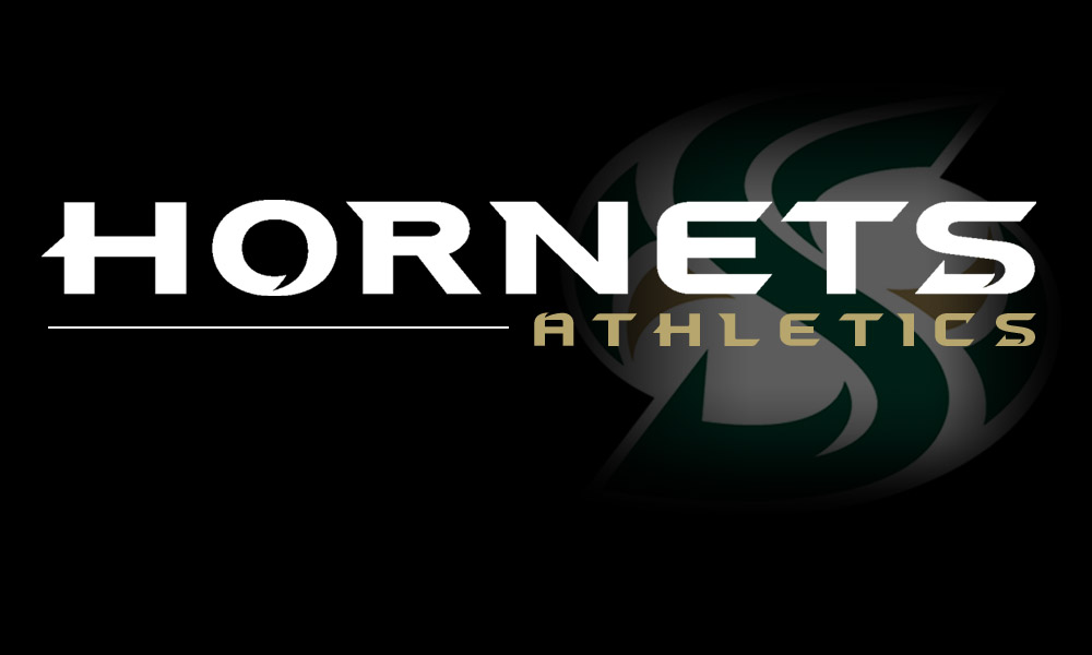 HORNET STUDENT-ATHLETES EARN 93 SPRING ALL-ACADEMIC HONORS