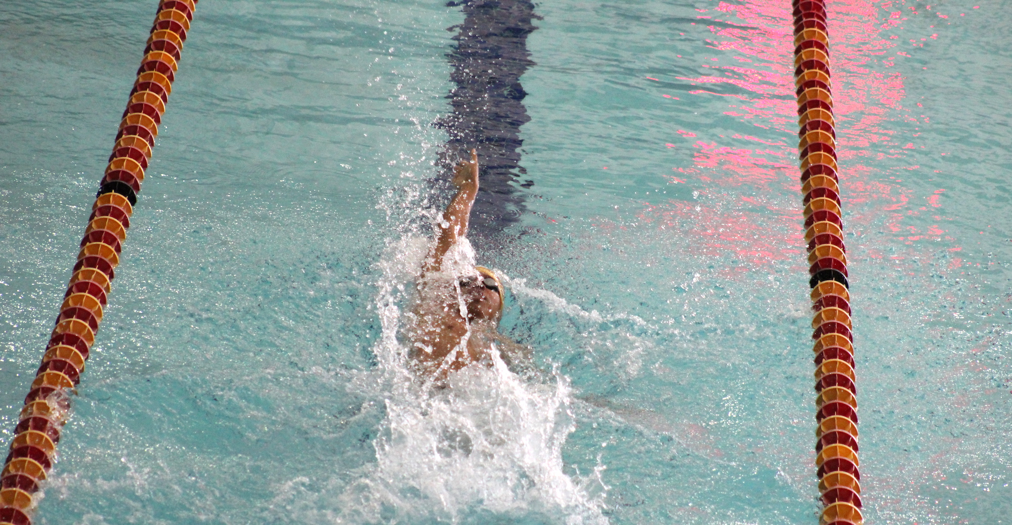 Men's Swimming Bests Ozarks, Falls to Colorado College