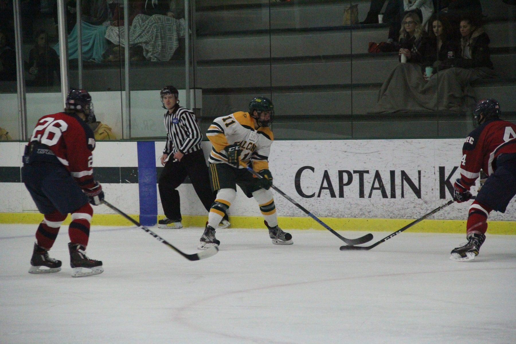 Falcons Skate Past Greyhounds, 8-3