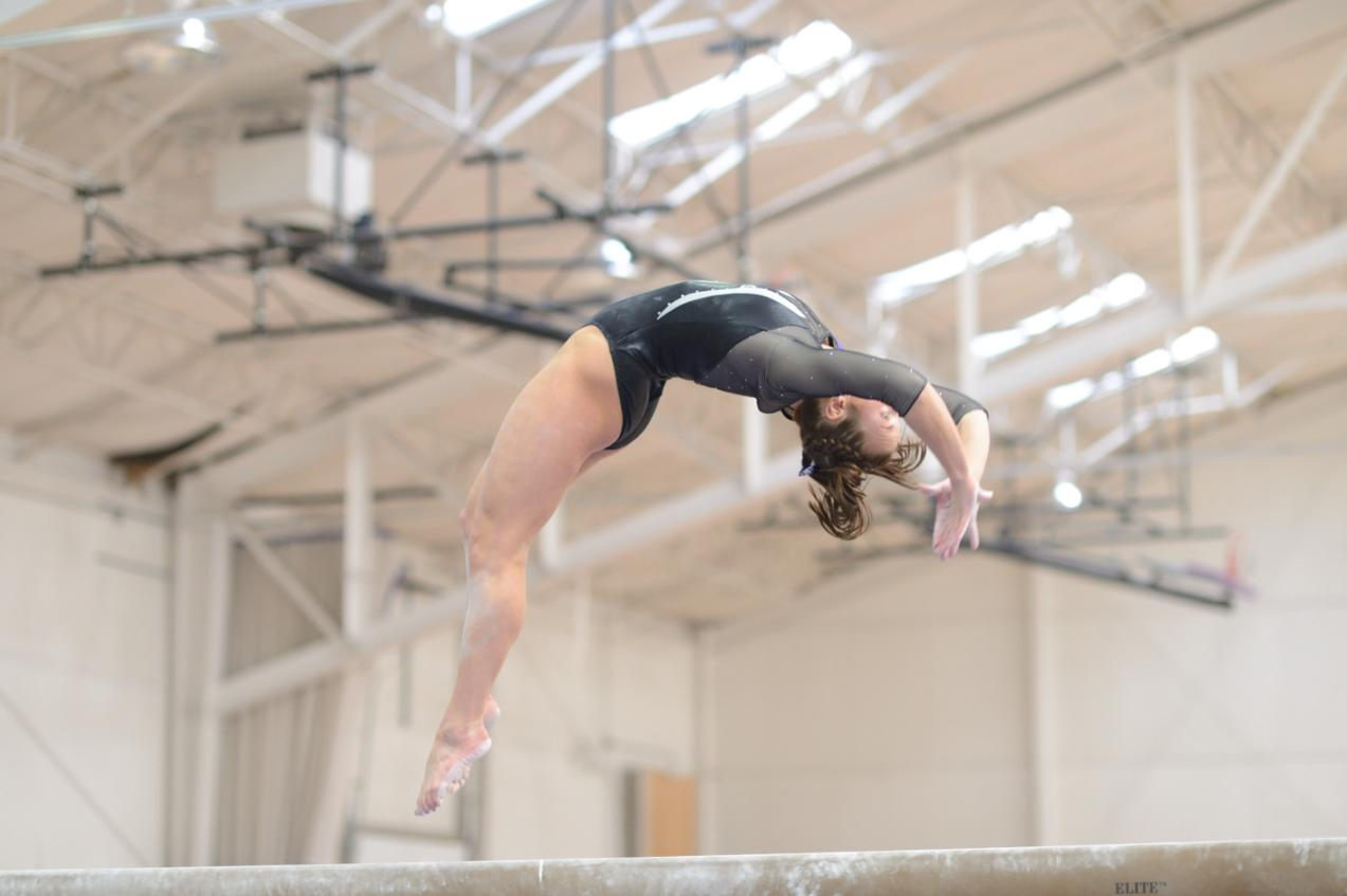 usag missouri state gymnastics meet 2015