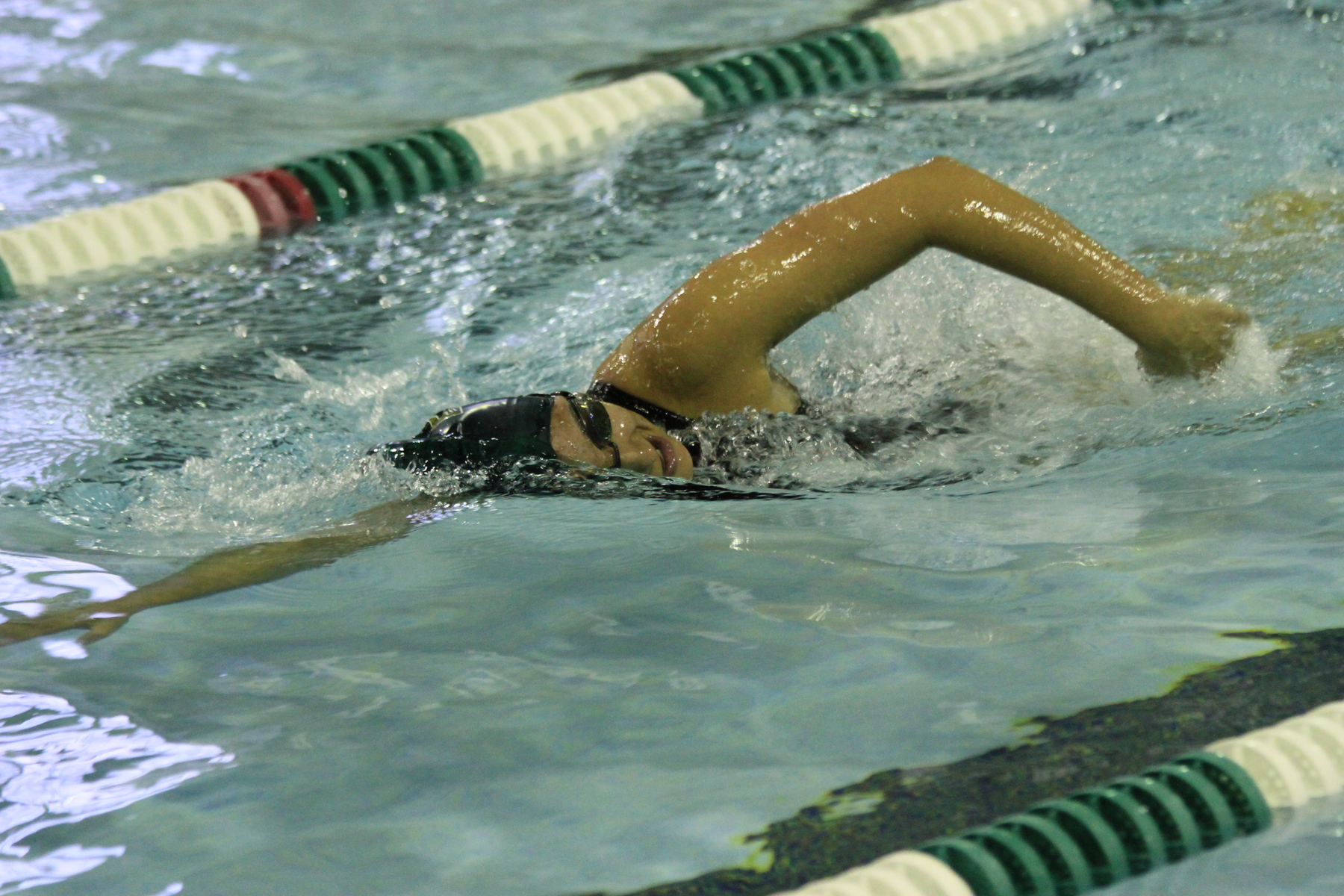 Caver and Carrier pace swimming in loss to Western New England