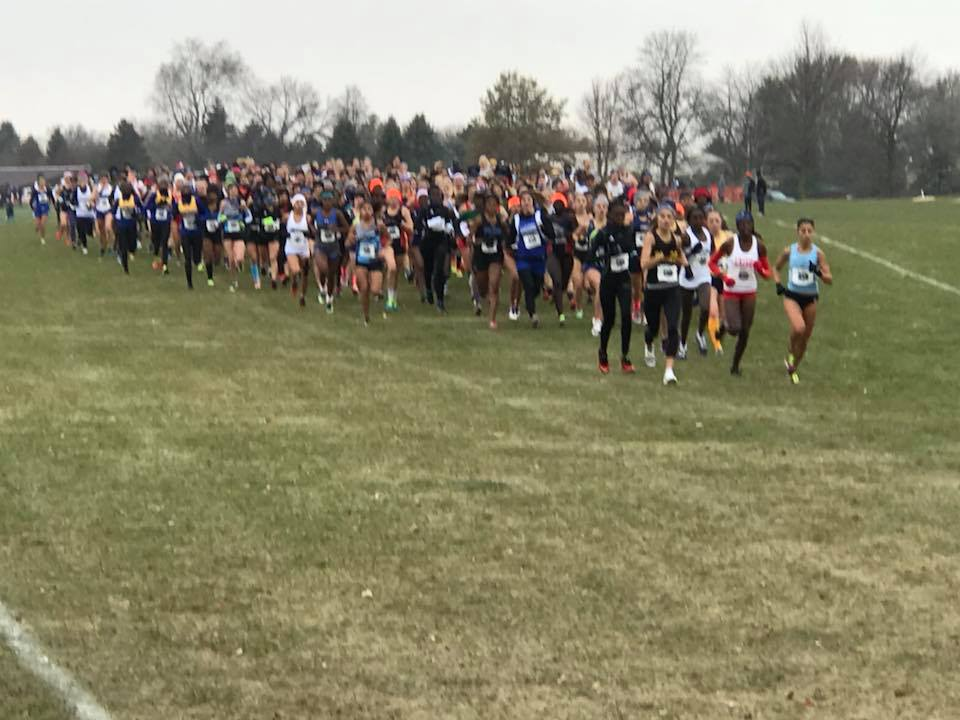 Women's Cross Country finishes 12th at NJCAA National Championships