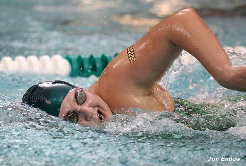 Meet Preview Swimming Amp Diving At Bentley Babson