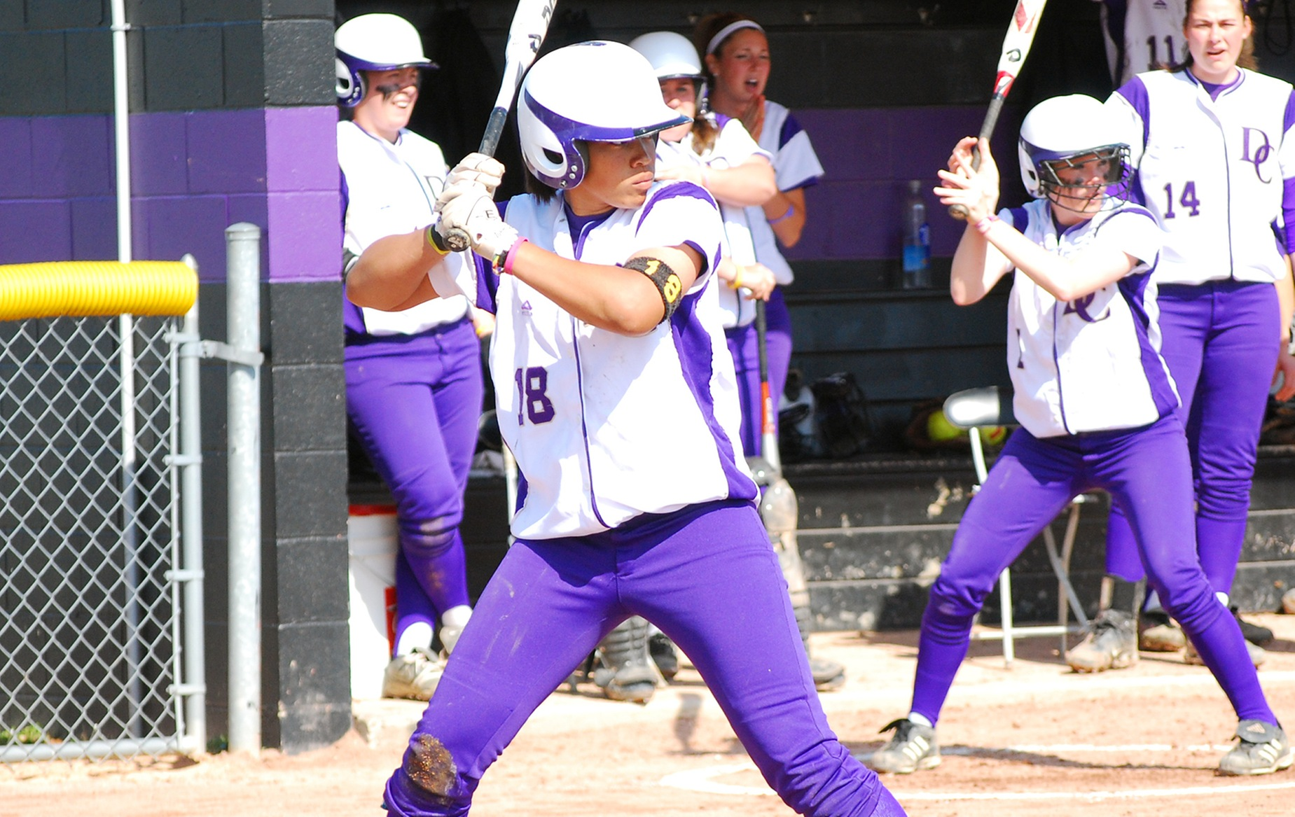 Softball Picked Fifth in HCAC Softball Coaches Preseason Poll