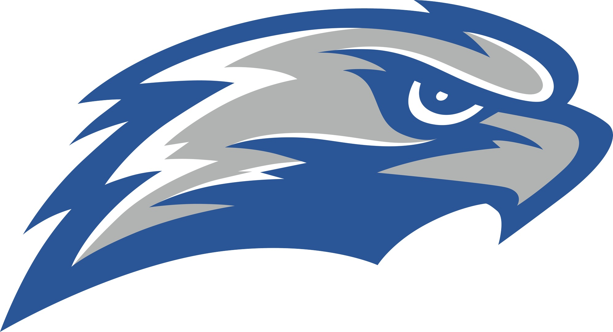 Image result for cuw falcons