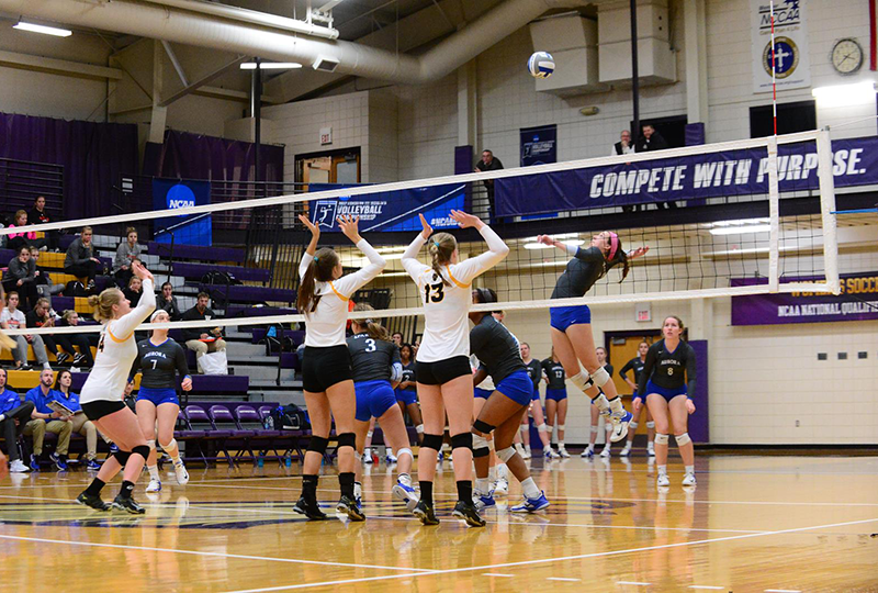 Aurora University competed in the program's first NCAA Women's Volleyball Tournament.