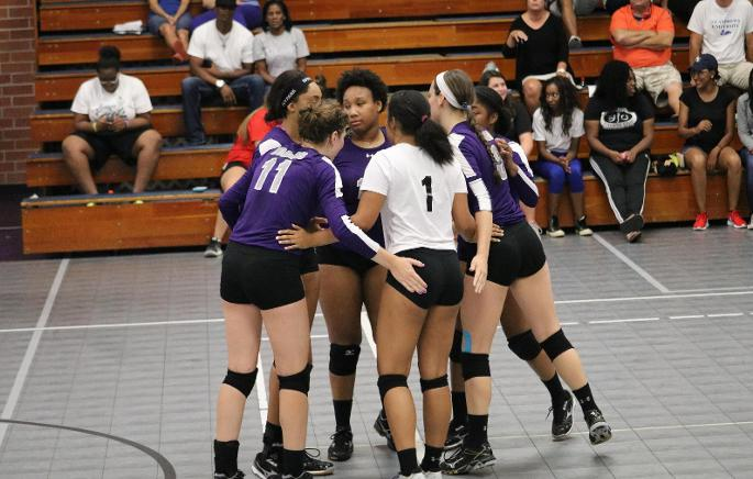 Koala Volleyball Picks Up 2 Conference Road Wins